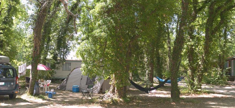 Emplacement ombragé camping Gard